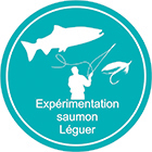 inscription saumon leguer